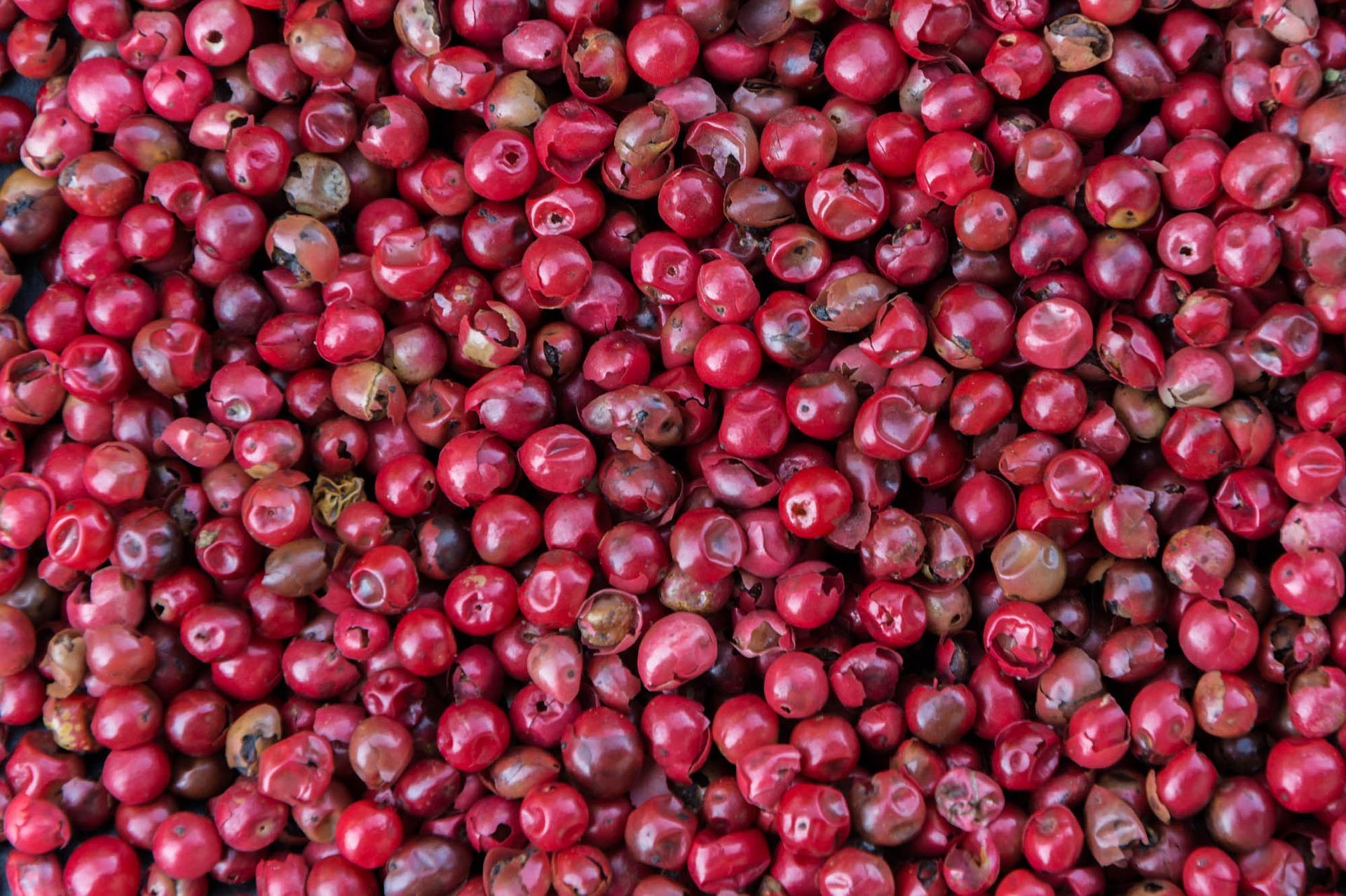 Rosa Beeren Schinus Terebinthifolius milder Pfeffer 20g